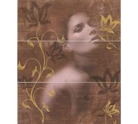 Декор Halcon Look Decor Allure-1 Chocolate 60*50