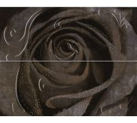 Декор Halcon Look Decor Rosa-2 Grafito 40*50