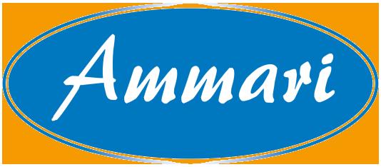 Логотип производителя душевых кабин из Китая