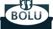 Купить душевую кабину Bolu Pentas BL-112/100N 100*100 см для ванной комнаты в интернет-магазине сантехники